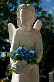 Cemetery angel. — Stock Photo