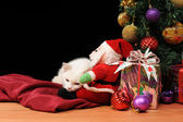 White cat playing with a Santa Claus — Foto Stock