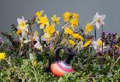 Flowers and ceramic carafe — Stock Photo
