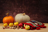 Pumpkin and ethnic bag of wool with fruits — Stockfoto
