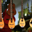 Mandolins — Stock Photo