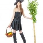Eco witch — Stock Photo #13437254