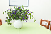 Plant on table — Foto Stock