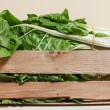 Stock Photo: Swiss chard
