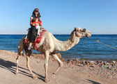 Woman on camel — Stock Photo