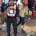 Royal Thai Police — Stock Photo