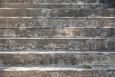 Concrete stairway with green leaf — Stock Photo