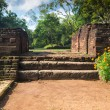 Small stairway in garden complex in Sigiriya — Stock Photo #47933099