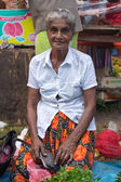 Local street vendor selling herbs — Stock Photo