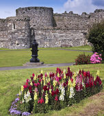 A Flowery Beaumaris Castle on Anglesey, Wales — Stock Photo