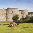 A Photographer Shoots Beaumaris Castle on Anglesey — Stock Photo