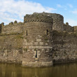Stock Photo: Beaumaris Castle Moat on Anglesey, Wales