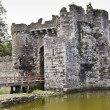 Beaumaris Castle Moat on Anglesey, Wales — Stock Photo #12638627