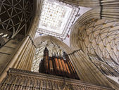 A View of the York Minster Choir Screen Ceiling — Stock Photo
