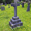 Stone Cross in Graveyard of Dandelions — Stock Photo #14194521