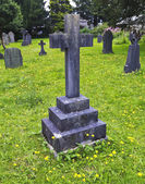 A Stone Cross in a Graveyard of Dandelions — Stock Photo