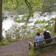 An Elderly Couple Watch Rowboats in a Lake — Stock Photo #14296209
