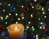 A Candle in Front of a Christmas Tree — Stock Photo