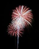 A Night Sky Full of Exploding Fireworks — Stock Photo