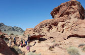 A Family at the Valley of Fire State Park — Stock Photo