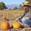 A Woman Compares Pumpkins in a Pumpkin Patch — Stock Photo