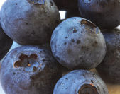 A Close Up of Blueberries on White — Stock Photo