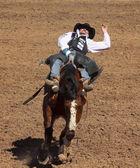а-ля фиеста де лос vaqueros, тусон, аризона — Стоковое фото
