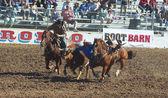 A La Fiesta De Los Vaqueros, Tucson, Arizona — Stockfoto