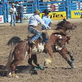 A La Fiesta De Los Vaqueros, Tucson, Arizona — Foto Stock