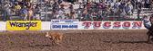 Alla fiesta de los vaqueros, tucson, arizona — Foto Stock