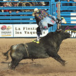 Постер, плакат: A La Fiesta De Los Vaqueros Tucson Arizona