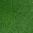 Stock Photo: Grass Background.