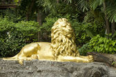 Golden lion statue — Stock Photo