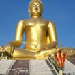 Big Golden Buddha statue in Thailand temple — Stock Photo #32023339