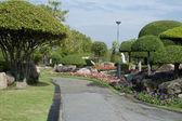 Güzel bahçe — Stok fotoğraf