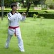 Stock Photo: Asimplaying with taekwondo