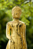 Golden buddha statue — Foto Stock