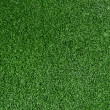 Foto Stock: Grass Background.