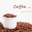 Coffee Beans background with white cup — Stock Photo