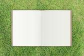 Livro marrom na grama — Foto Stock