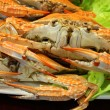 Boiled crab In the local restaurant — Stock Photo