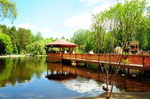 Lake in Novosibirsk zoo — Stock Photo