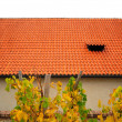 Piece of red roof and local vineyard in Prague - Stock Photo