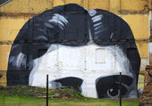 Franz Kafka, graffiti — Stock Photo