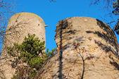 Towers of Zebrak castle in Czech Republic — Stock Photo