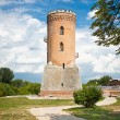 Chindia tower in Targoviste, Romania - Stock Photo