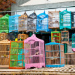 Litle birds in the cage. Java, Indonesia. - Stock Photo