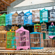 Stock Photo: Litle birds in cage. Freedom concept.