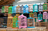 Litle birds in the cage. Java, Indonesia. — Stock Photo