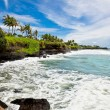 Amazing tropical landscape, Bali. Indonesia. - Stock Photo